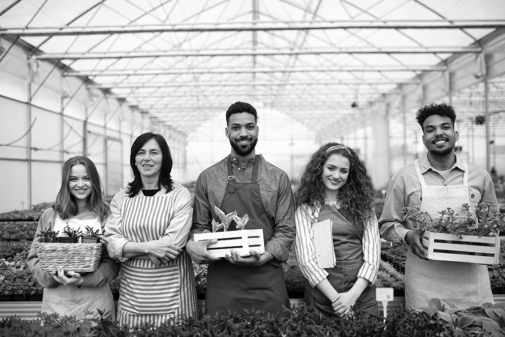 Portrait of people working in greenhouse in garden center, looking at camera.