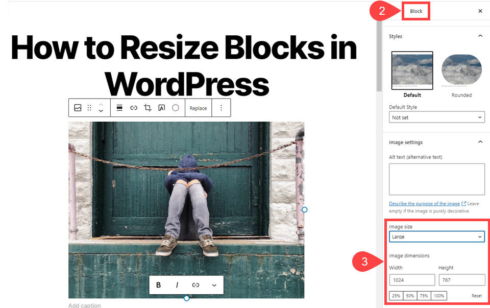 image options for how to resize blocks in wordpress